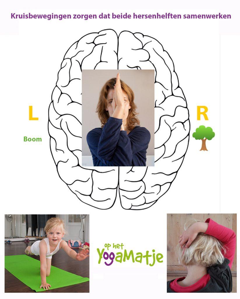 hersenhelften laten samenwerken met een kruisbeweging tijdens de kinderyoga ouder amp; kind workshop